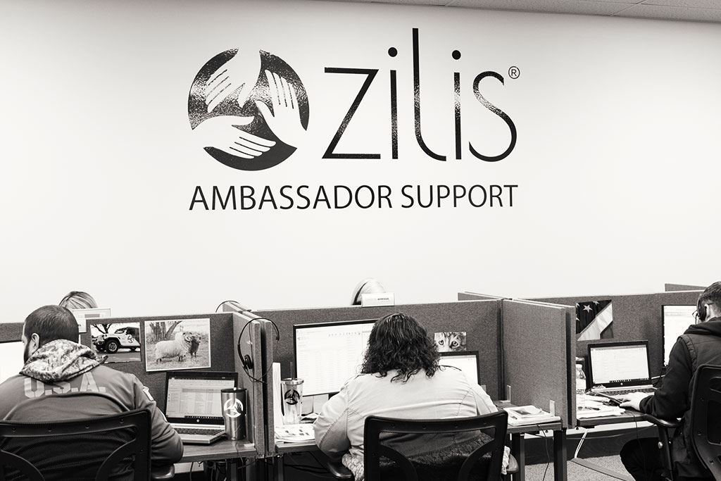 6_Zilis_Support